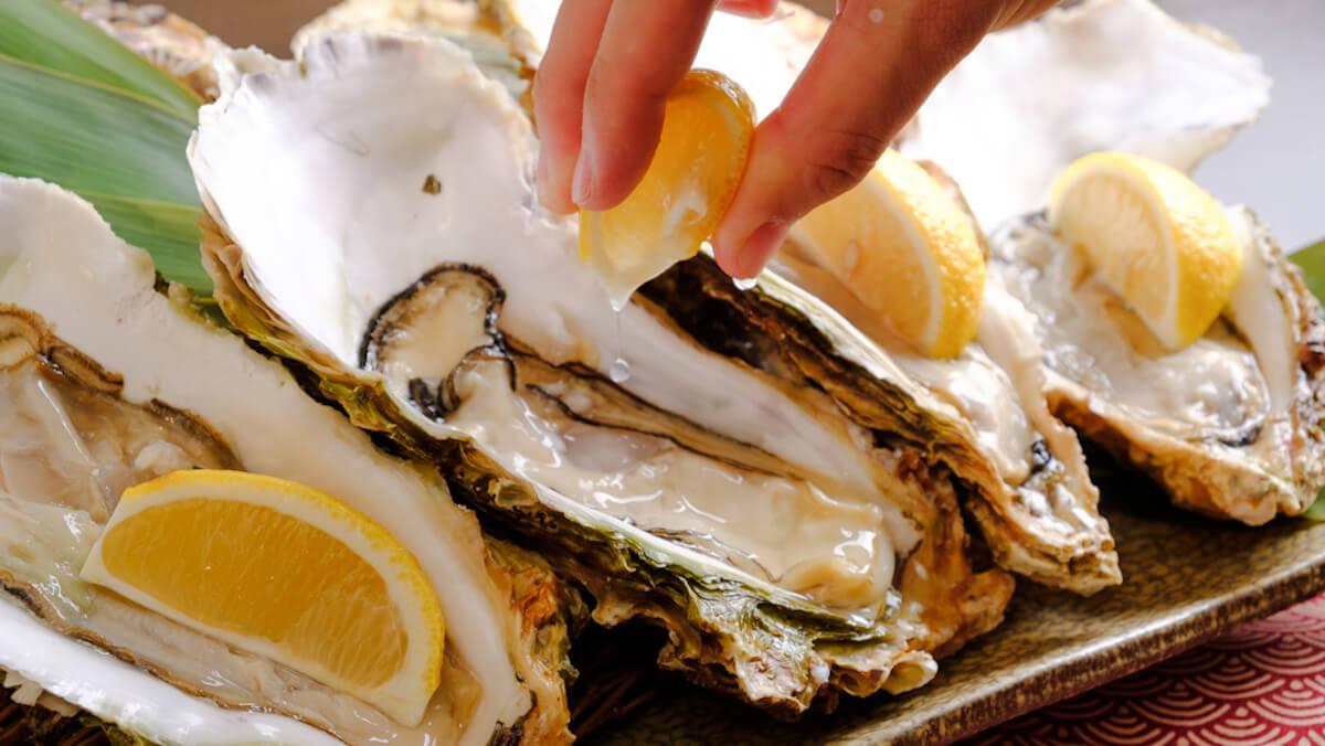 牡蠣好きのための「牡蠣尽くしコース」で牡蠣鍋!牡蠣の湯引き!お刺身!カキフライ! gourmet181214-oyster-3