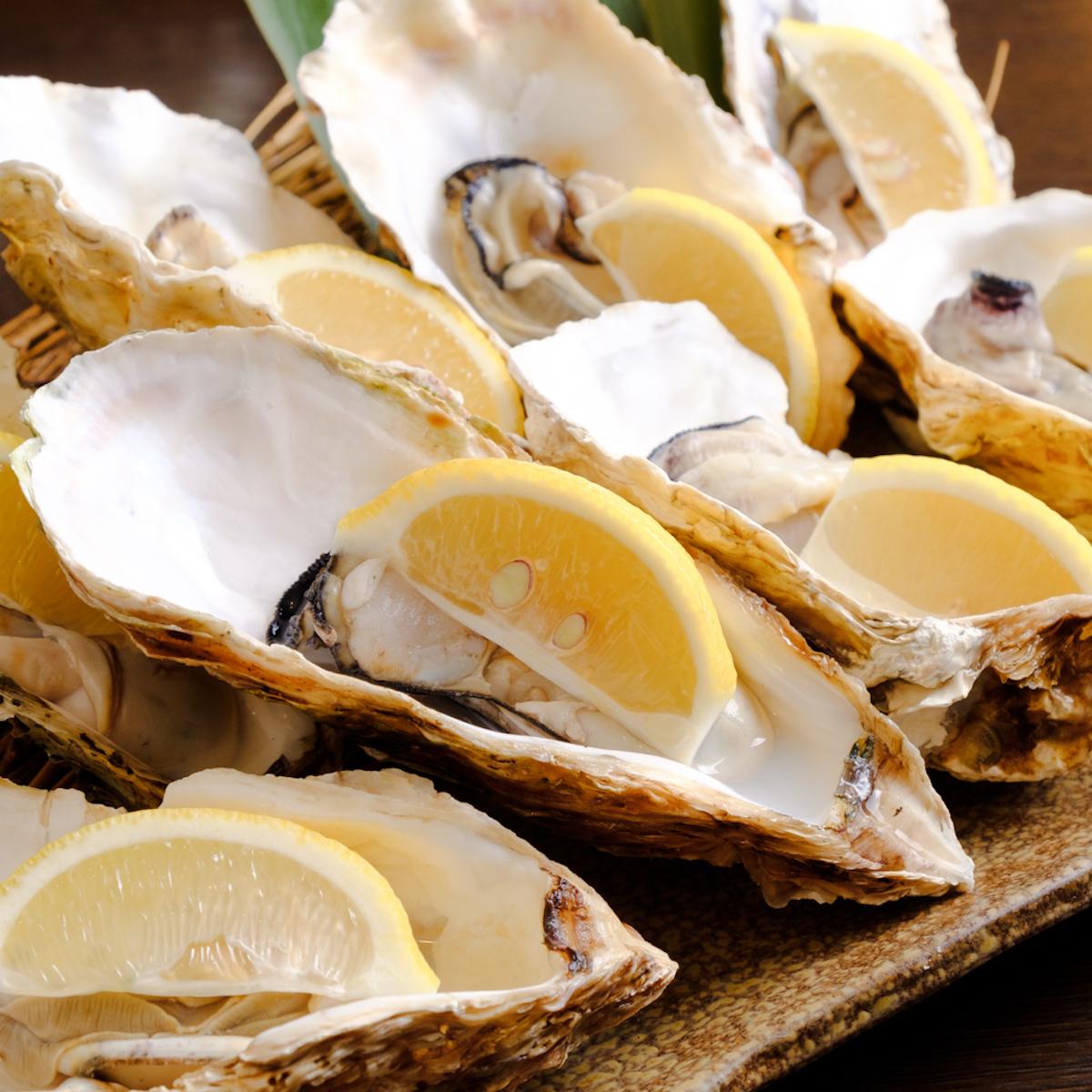 牡蠣好きのための「牡蠣尽くしコース」で牡蠣鍋!牡蠣の湯引き!お刺身!カキフライ! gourmet181214-oyster-5