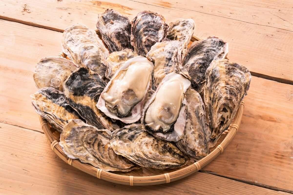 牡蠣フライ・焼き牡蠣・蒸し牡蠣・牡蠣鍋が食べ放題! 神田で『贅沢!牡蠣食べ放題フェア』が開催! gourmet190121-toraemon-kanda-3-1200x800