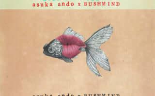 Bushmindとasuka ando