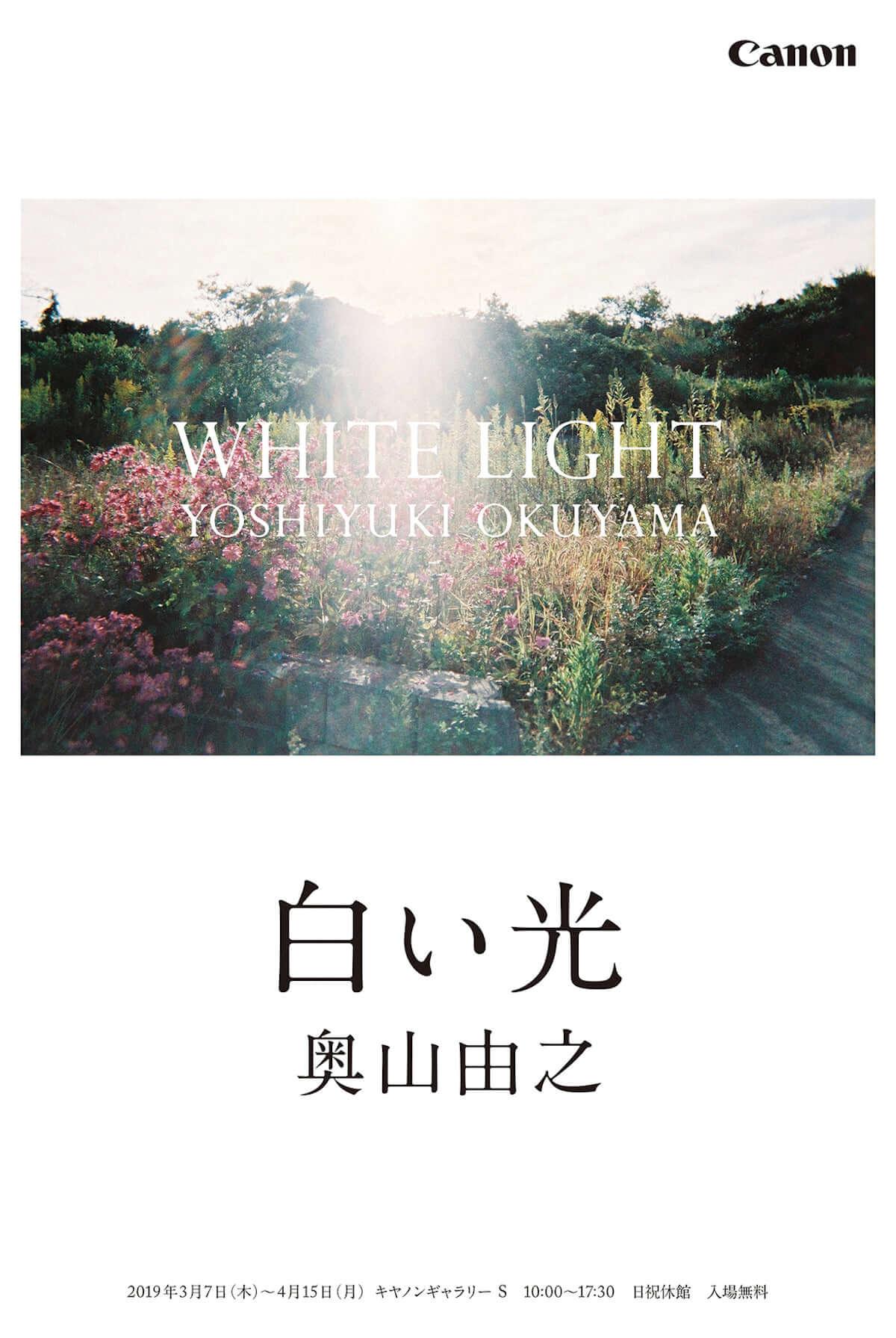 奥山由之が個展「白い光」を3月より開催|作品は全てキャノンの大判プリンター「imagePROGRAF」で印刷 y-okuyama-1200x1791