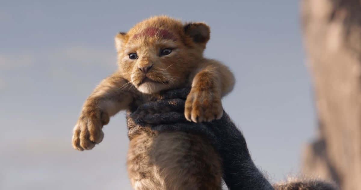 映画『ライオン・キング』公開日が8月9日に決定!シンバ誕生の瞬間を捉えた激カワ場面写真も解禁に film190227-lionking-1200x633