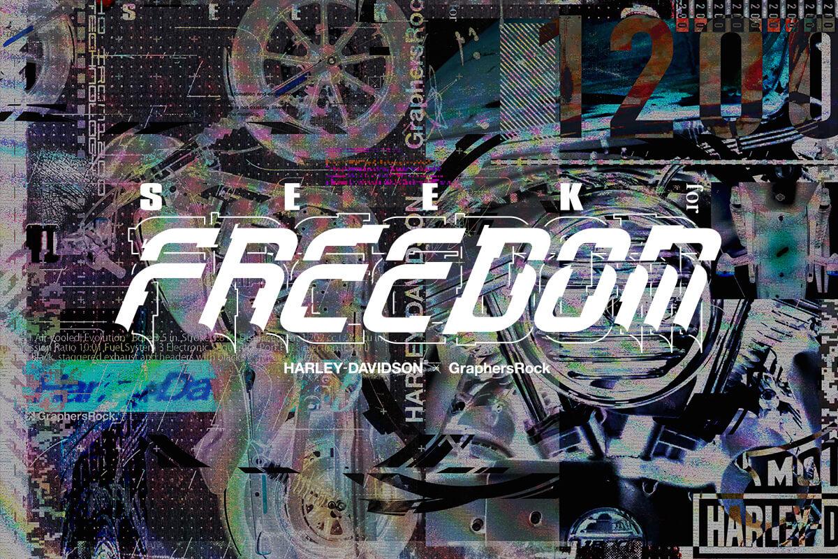 SEEK for FREEDOM