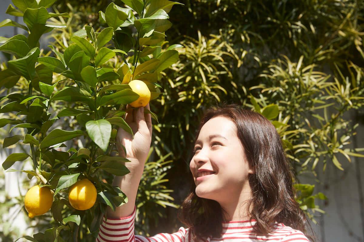 無料でハーゲンダッツ新商品を楽しめる「Häagen-Dazs Weekend Lemon Garden」が4月6日限定で東京・南青山にオープン! gourmet190328_haagendazs_9-1200x800