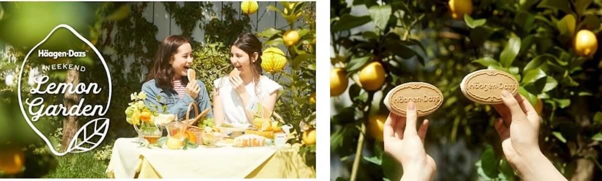 無料でハーゲンダッツ新商品を楽しめる「Häagen-Dazs Weekend Lemon Garden」が4月6日限定で東京・南青山にオープン! gourmet190328_haagendazs_6-1200x361