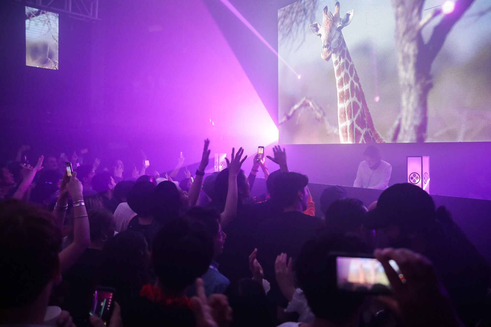 Photo Report:Peggy Gou|EDC JAPAN 2019 OFFICIAL AFTER PARTY music190514-peggygou-4