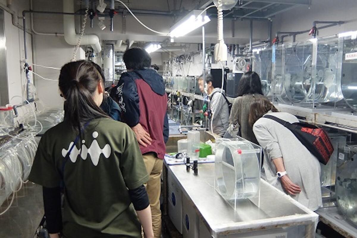 京都水族館で開催「夜のすいぞくかん」が超幻想的!スヤスヤ眠る動物たちに注目 life190610_yorunosuizokukan_6