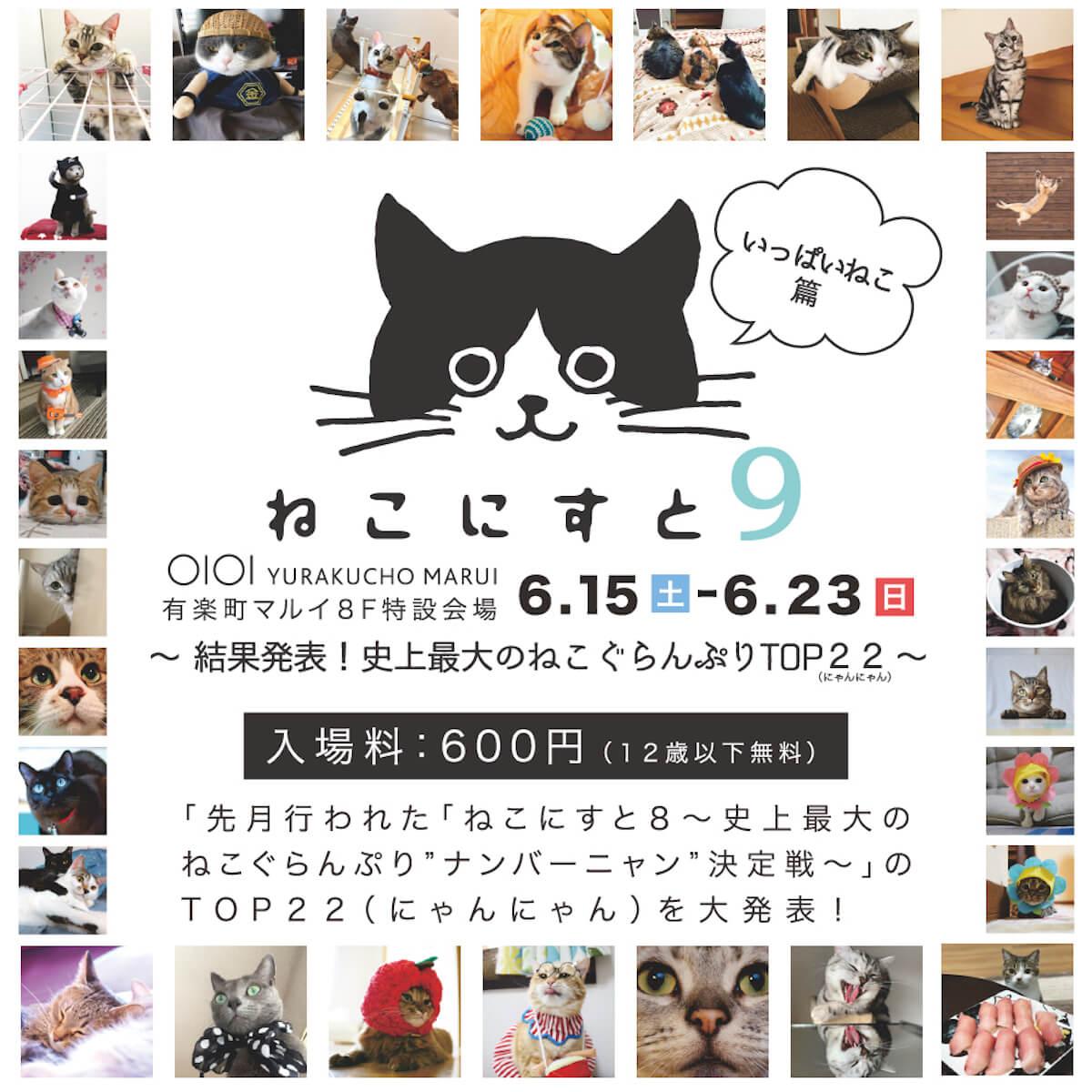 ナンバーニャンはどのねこ?日本最大級ねこちゃんパネル&グッズ展<ねこにすと展>開催 artculture190612nekonist_info