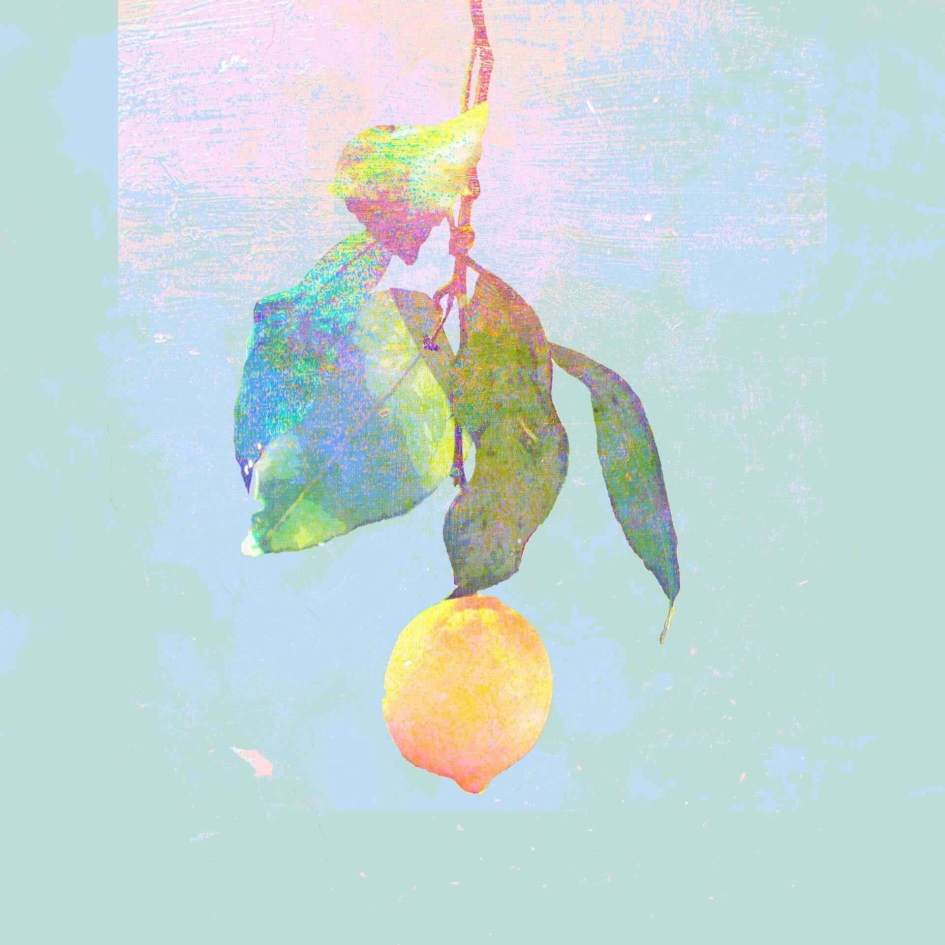 米津玄師、大塚国際美術館で「Lemon」特大ジャケットの陶板展示が決定|2019年上半期チャート25冠&MV4億再生記念 artculuture190705yonezukenshi-lemon_2-1920x1920