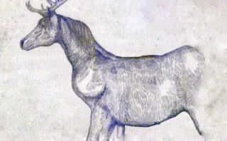 米津玄師『ノーサイド・ゲーム』主題歌「馬と鹿」がCDリリース決定!「海の幽霊」も収録