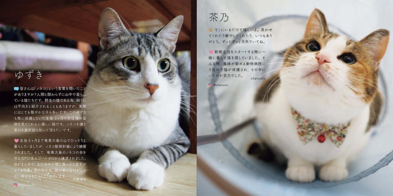 人とペットが共生できる社会へ|写真集『みんなイヌ、みんなネコ』発売!写真展も開催 sub3-4-1440x719