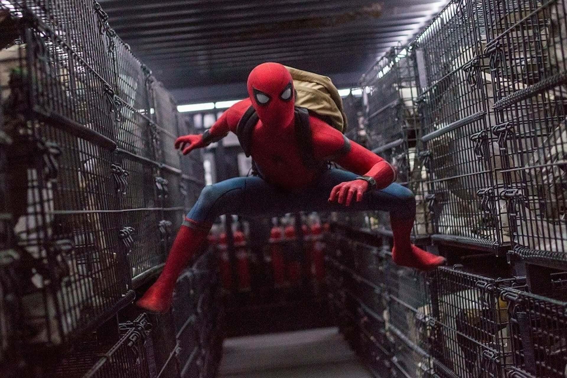 帰ってきて、スパイダーマン!MCU残留を願う請願書がネットで発足 film190822_spiderman_petition_main-1920x1280