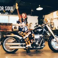 seek for soul