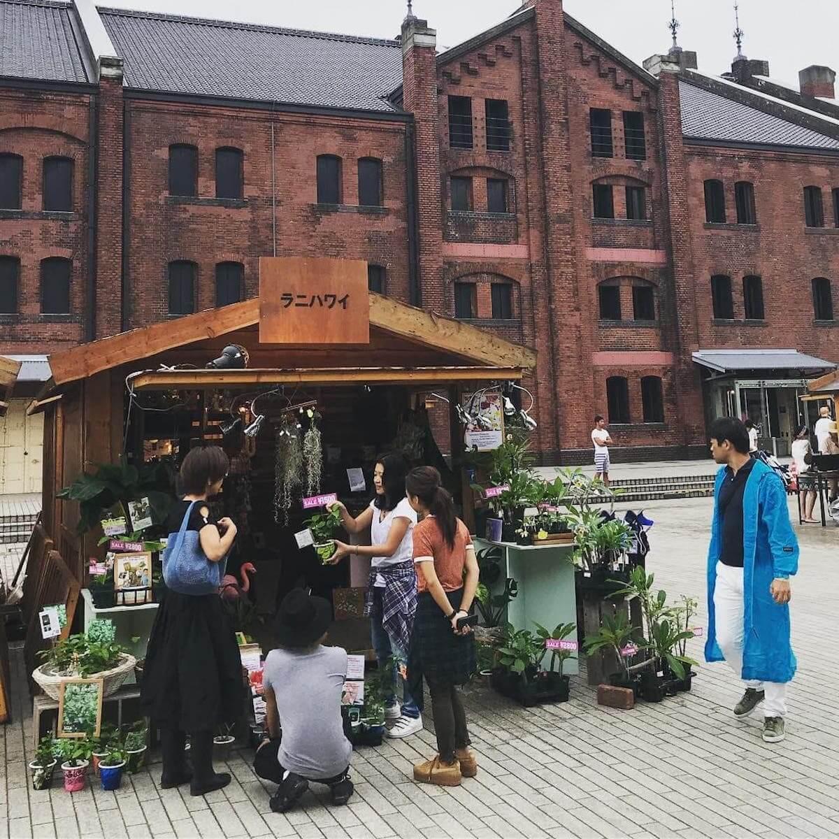 ボタニカルフェスってなに?<Local Green Festival'19>のコンテンツと魅力を大解剖 music190805_LGF_lanihawaii