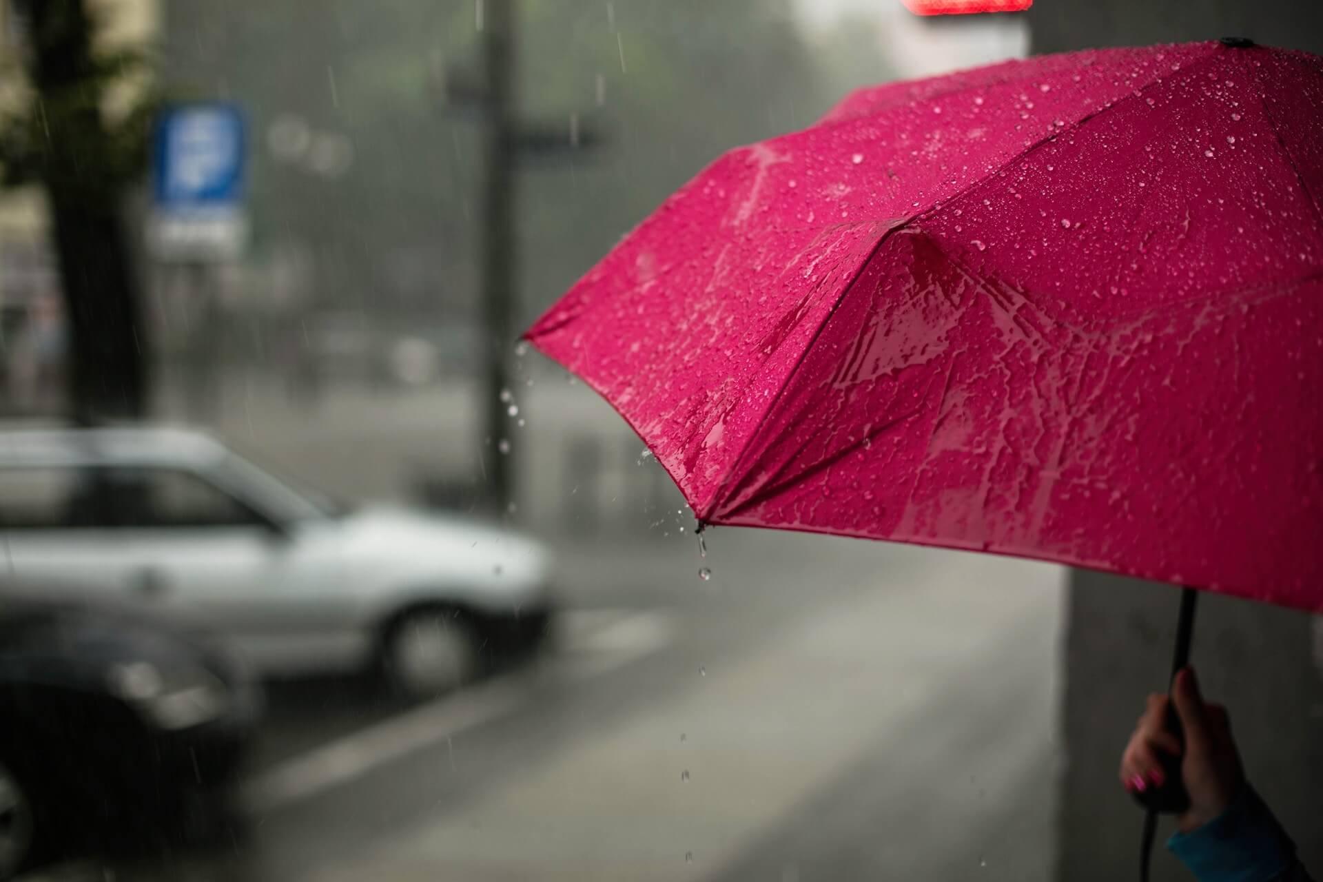 台風対策の味方!「LINEほけん」から1日250円で加入できる「台風のときの安心保険」が提供中 tech191011_lineinsurance_03