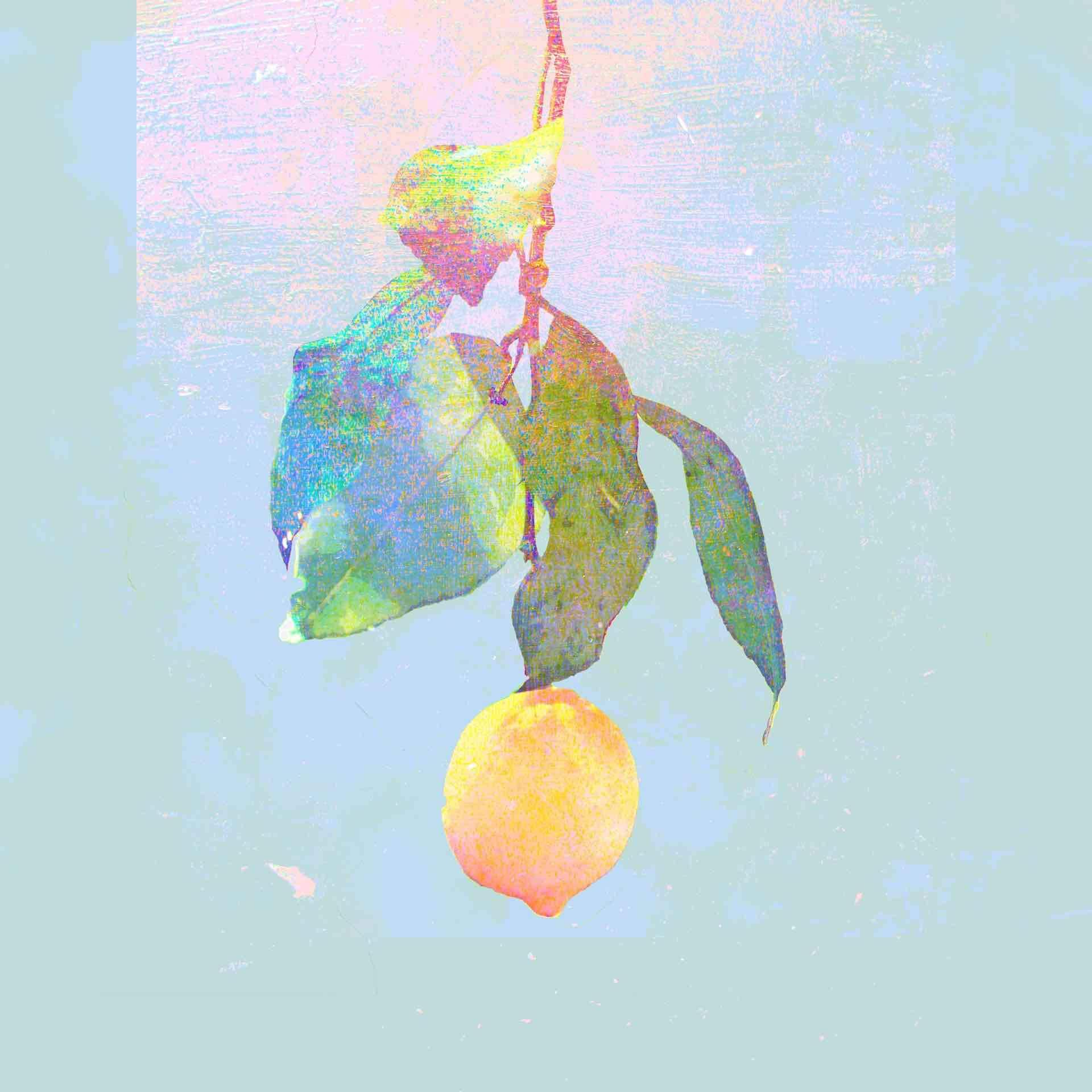 """カラオケの定番といえば米津玄師「Lemon」!前人未踏のカラオケランキング""""85週""""連続1位を記録 music191108_yonezukenshi_lemon_main"""