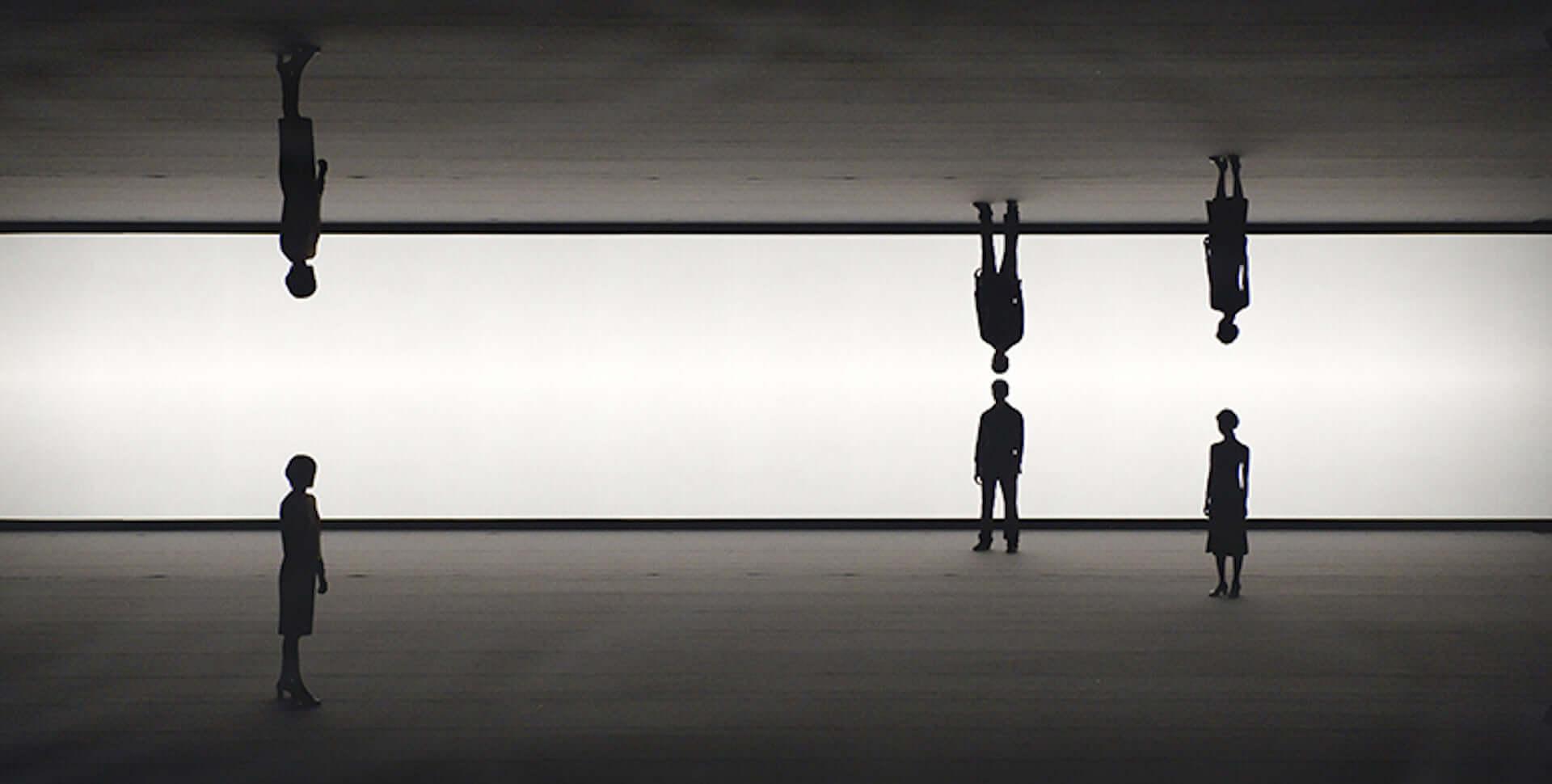 坂本龍一との共演でも知られるダムタイプのメンバー・高谷史郎の初ドキュメンタリー映画『DUMB TYPE 高谷史郎ー自然とテクノロジーのはざま』の劇場公開が決定 film200217_shirotakatani_2-1920x970