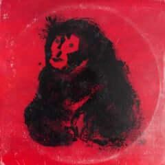 dos monos rojo