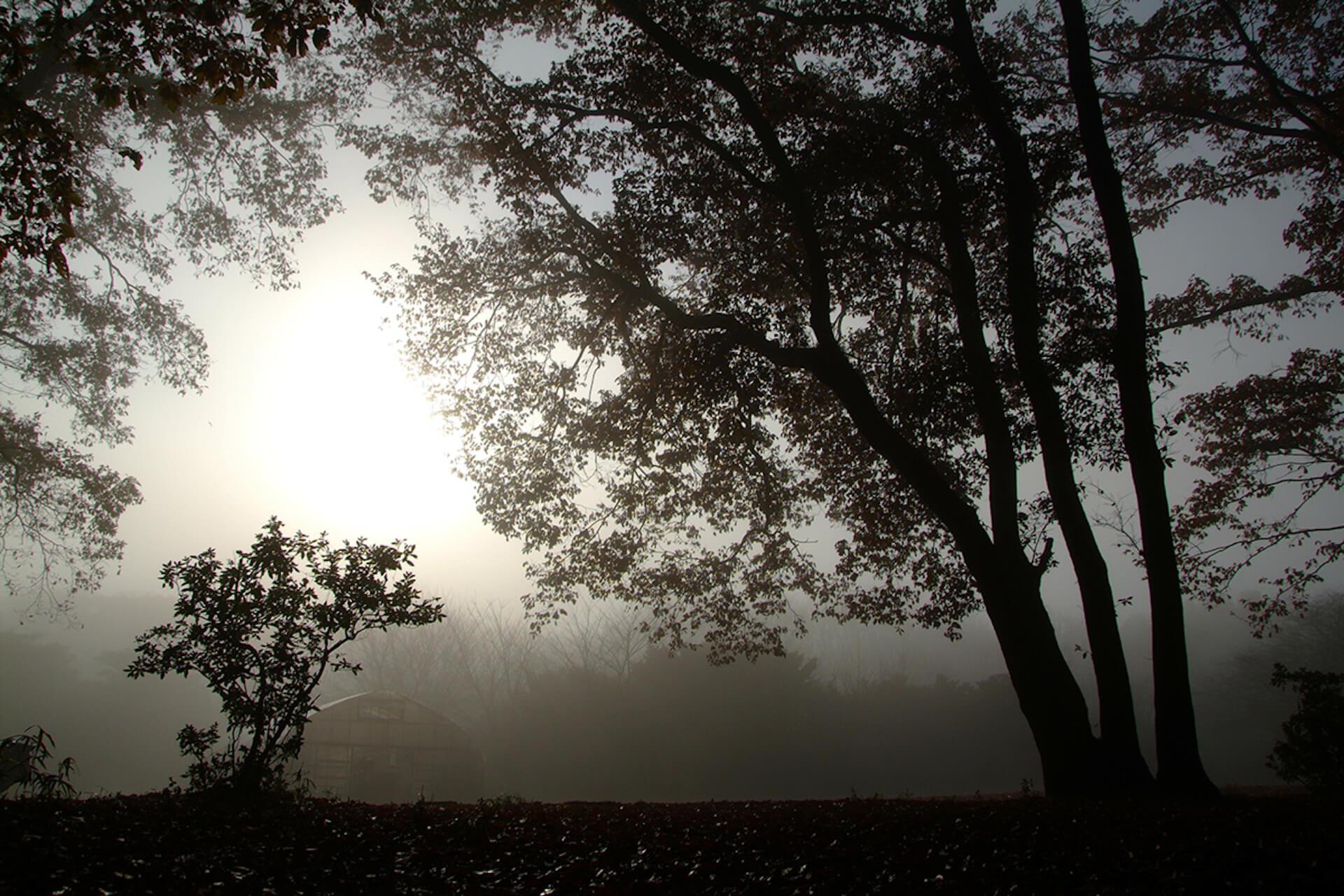 【全国のグランピング・キャンプ場15選】海・山・湖・高原・離島など絶好のロケーションばかりで、インスタ映え間違いなし! life200612_jeep_camp_3