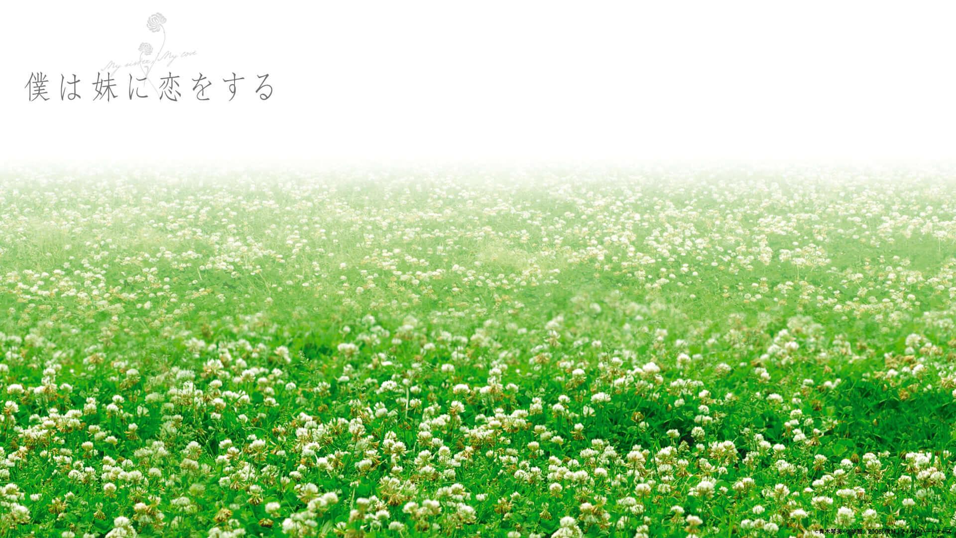 松本潤・榮倉奈々初共演映画『僕が妹に恋をする』デジタル配信決定!映画の世界に入り込めるバーチャル背景公開中 film200623_bokuimo_1-1920x1080