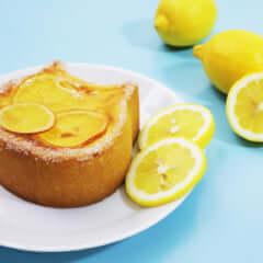 ねこねこチーズケーキ