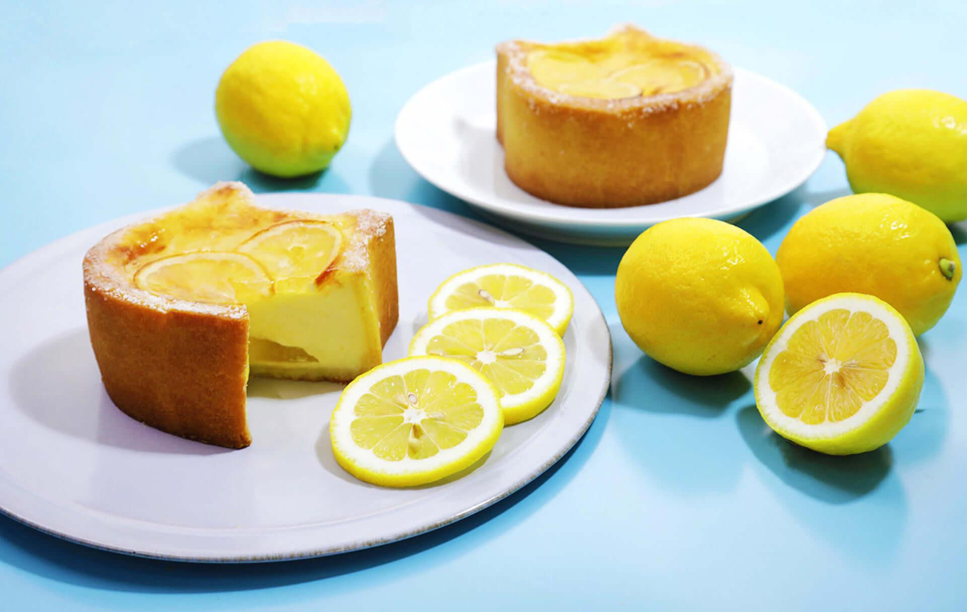 クリームの甘さとレモンの酸味がたまらない『ねこねこチーズケーキ~瀬戸内レモン~』が夏季・数量限定で新登場! gourmet200630_nekoneko_cheesecake_05-1920x1215