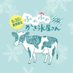 ミルク かき氷