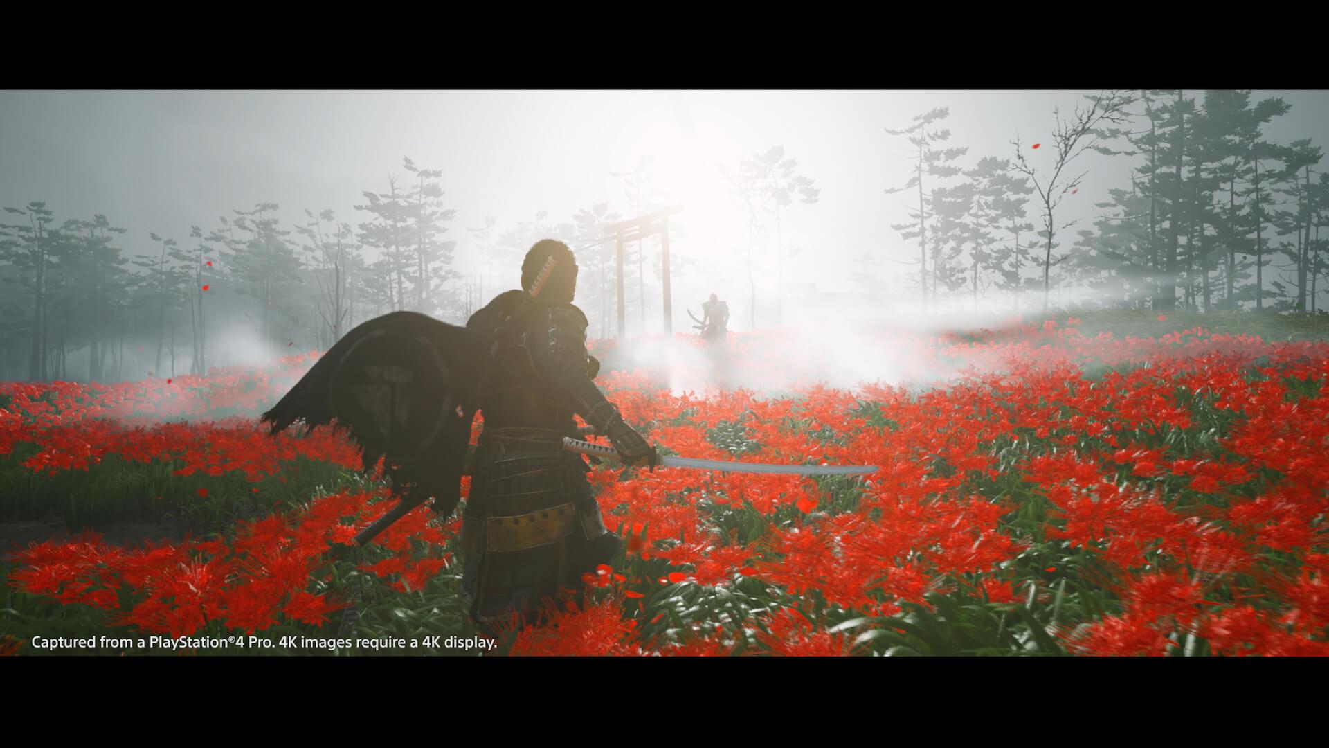 新感覚のオープンワールド時代劇を体感せよ!PS4専用ソフト『Ghost of Tsushima』がついに本日発売 tech200717_ghostoftsushima_14