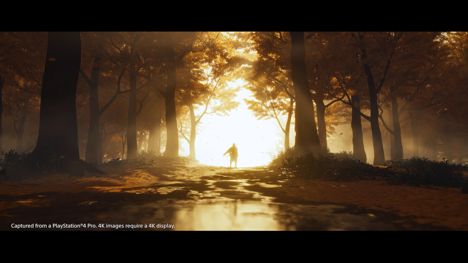 新感覚のオープンワールド時代劇を体感せよ!PS4専用ソフト『Ghost of Tsushima』がついに本日発売 tech200717_ghostoftsushima_19