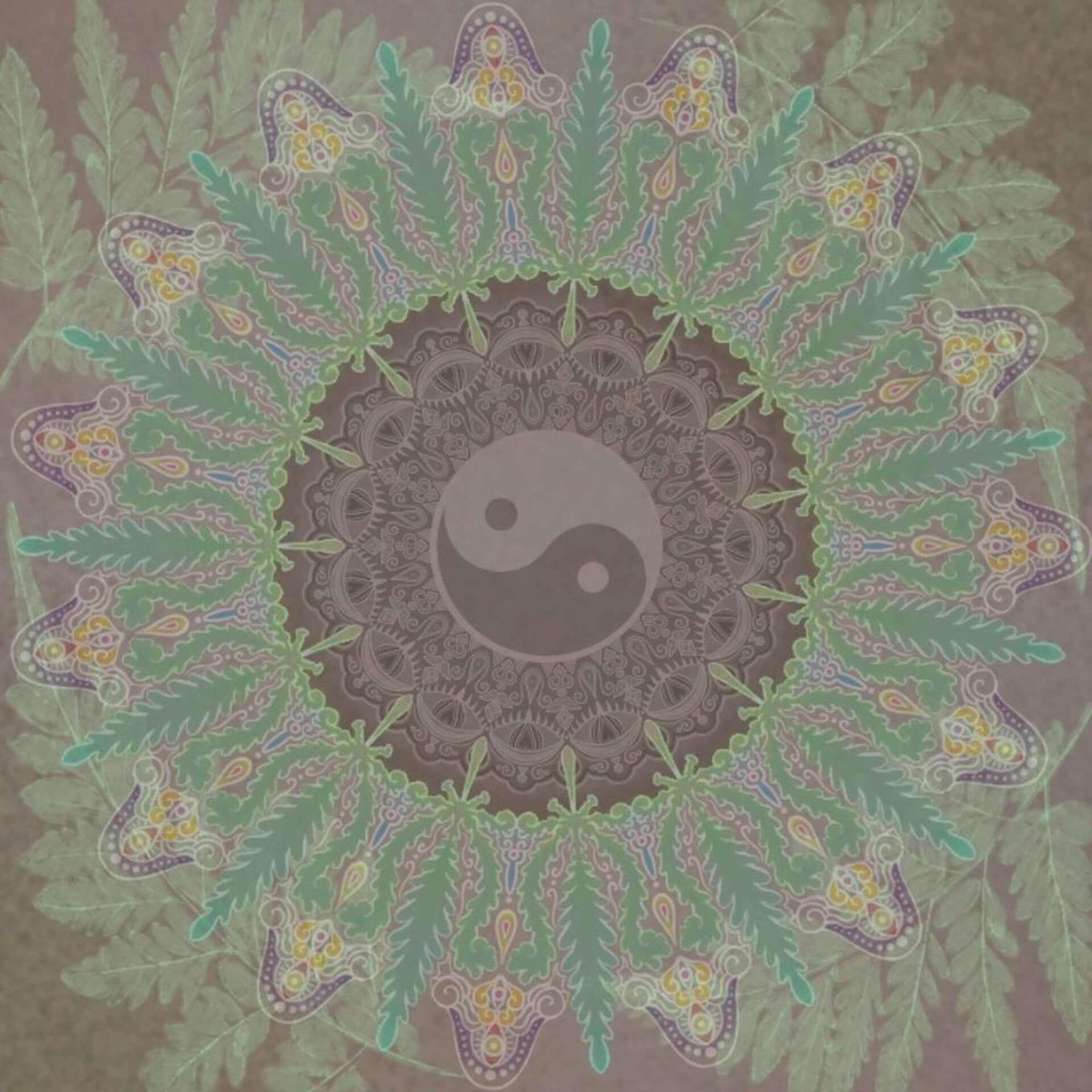 """OKBOY&Dogwoodsが最新EP『Bumpy/凸凹』をリリース!Stellaeyesプロデュースの収録曲""""yungcorn""""のMVも解禁 music200721_okboy-dogwoods_2-1920x1920"""