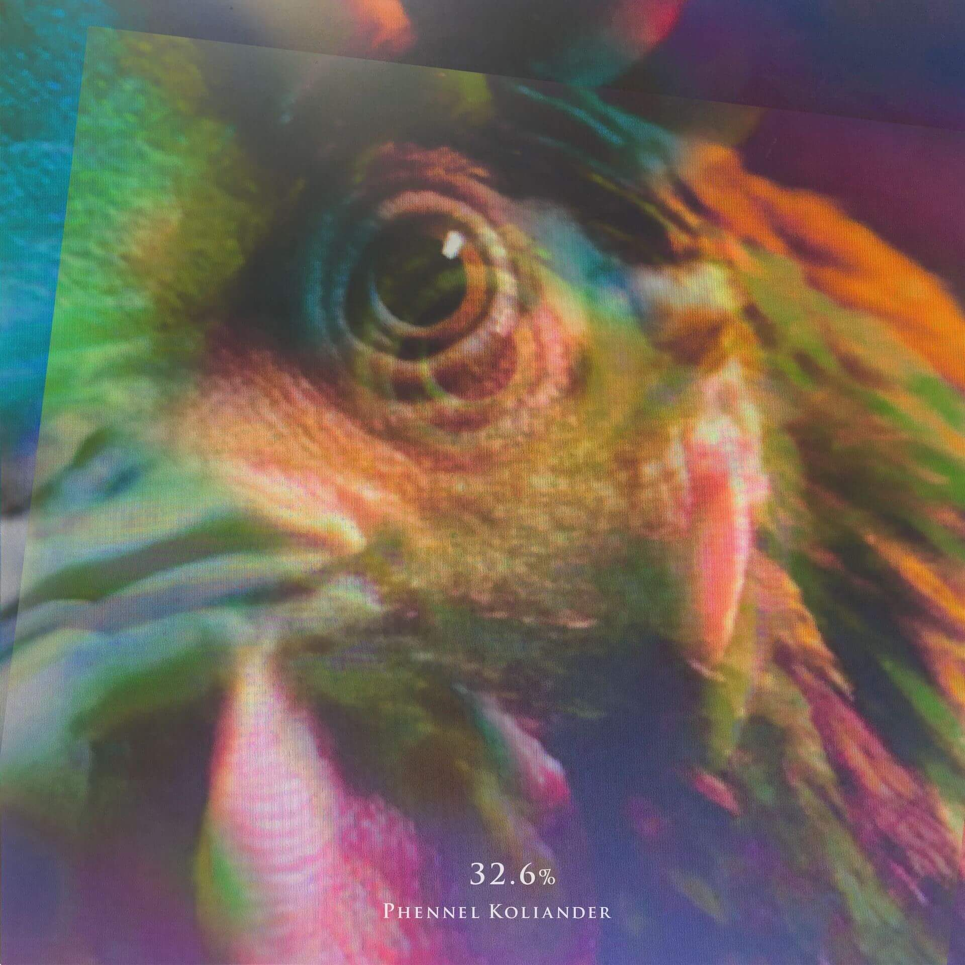 WONK擁する〈EPISTROPH〉のビートメイカーPhennel Kolianderがリリース企画『%』の第2段『32.6%』をデジタルリリース! music200825_phennelkoliander_1