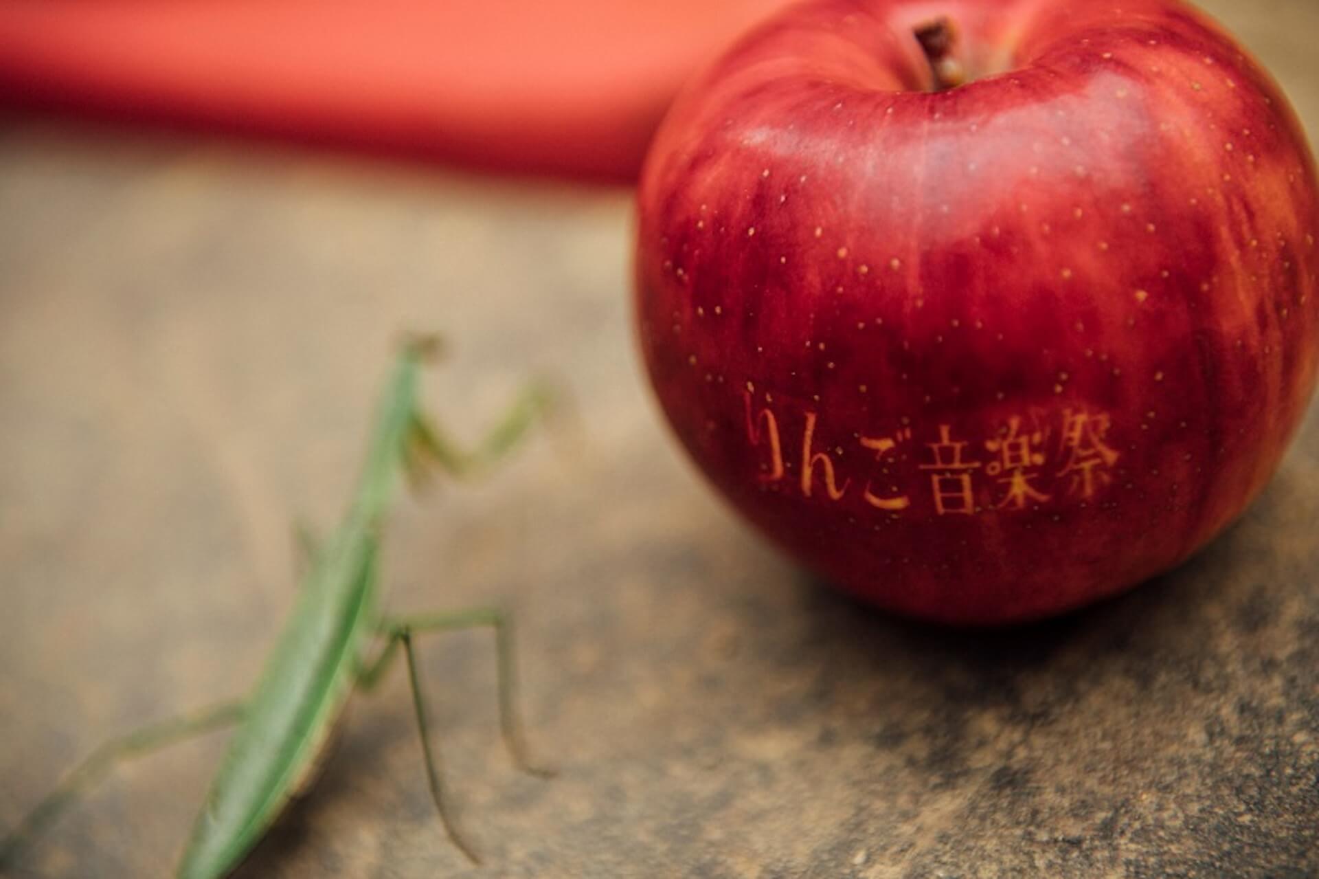 <りんご音楽祭 2020>が今年も開催決定!チケット発売日や新型コロナウイルス感染対策など詳細も発表&前夜祭開催も music20200821-ringomusicfes3