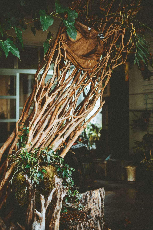 planb master-pieceが没入型店舗イベント<西畠勲造 PROJECT>を開催決定!珍奇植物・ビザールプランツが多数展開 art200925_planb-master-piece_35-1920x2880