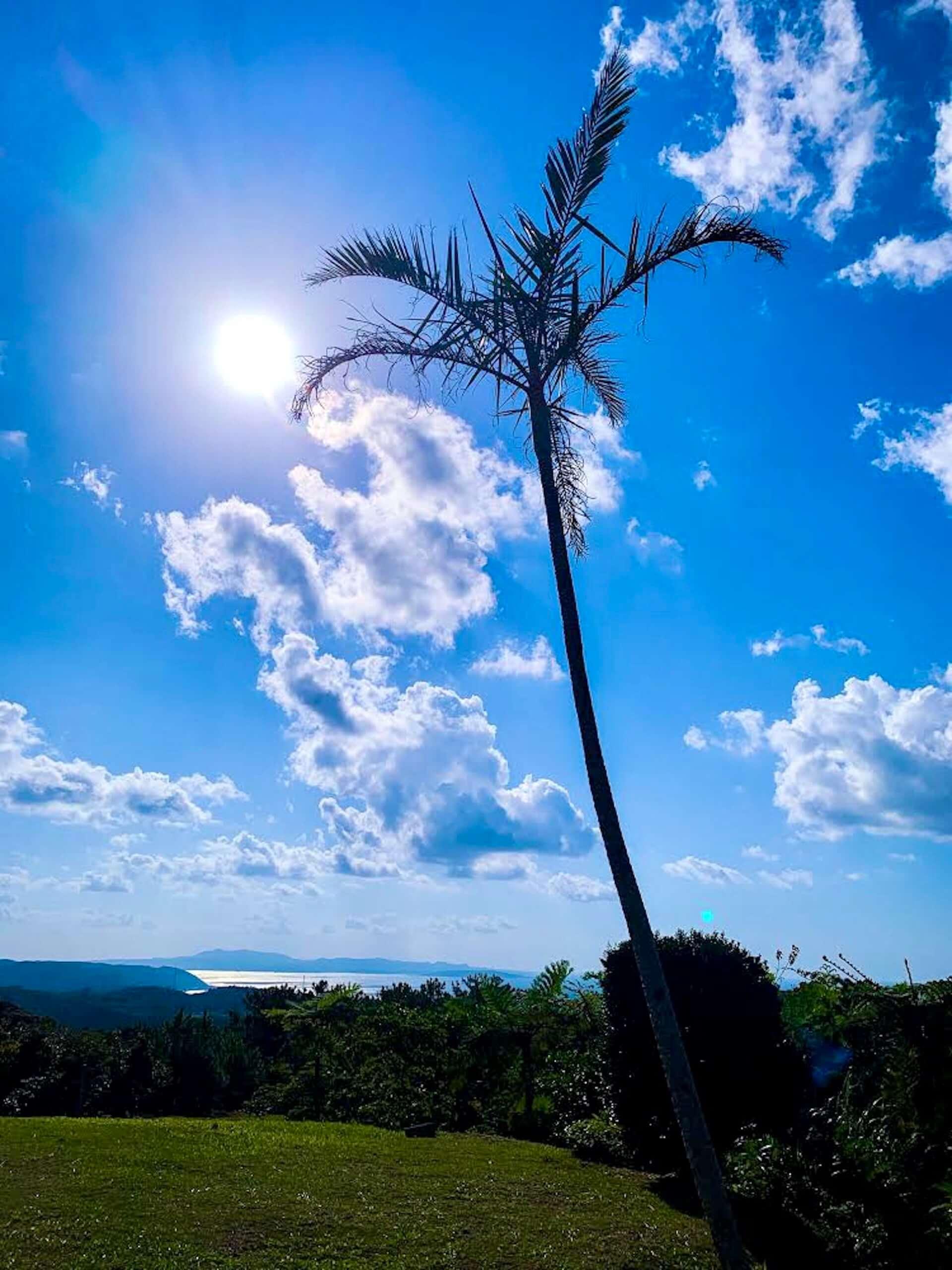 沖縄の絶景スポットで開催される野外フェス<Agaitida 2020>第2弾ラインナップが発表!DJ Nobu、Wata Igarashi、Gonno、Licaxxx、Shhhhhが出演決定 music201014_agaitida_4-1920x2560