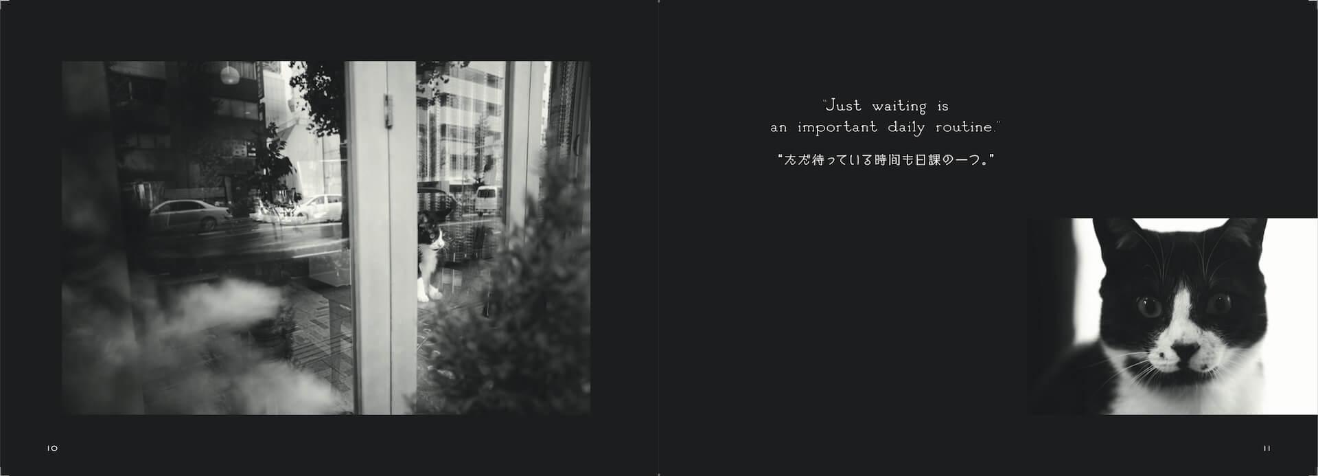 写真集『猫と喫茶店』が発売|「珈琲時間」人気連載の書籍化 art191021_catandcafe_sub2
