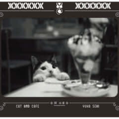 猫と喫茶店