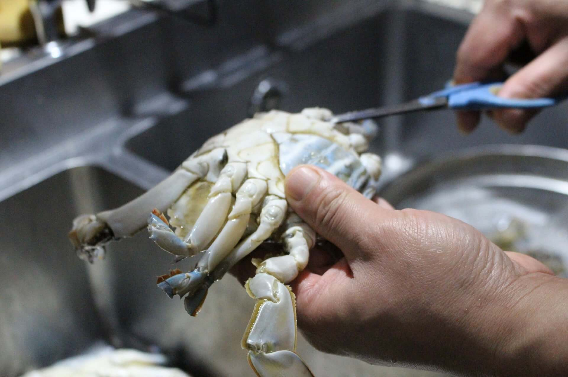北海道産のワタリガニを使用した『生カンジャンケジャン』が「韓国食堂ケグリ」に登場!1日10食限定で販売開始 gourmet201029_kankokushokudou-keguri_2-1920x1273