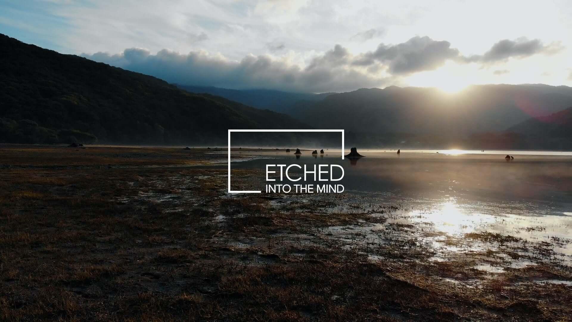日本の風景&音楽を発信するアートプロジェクト「ETCHED」にSakura Tsurutaが登場!4Kのライブ映像が無料公開 music201120_etched_2-1920x1080