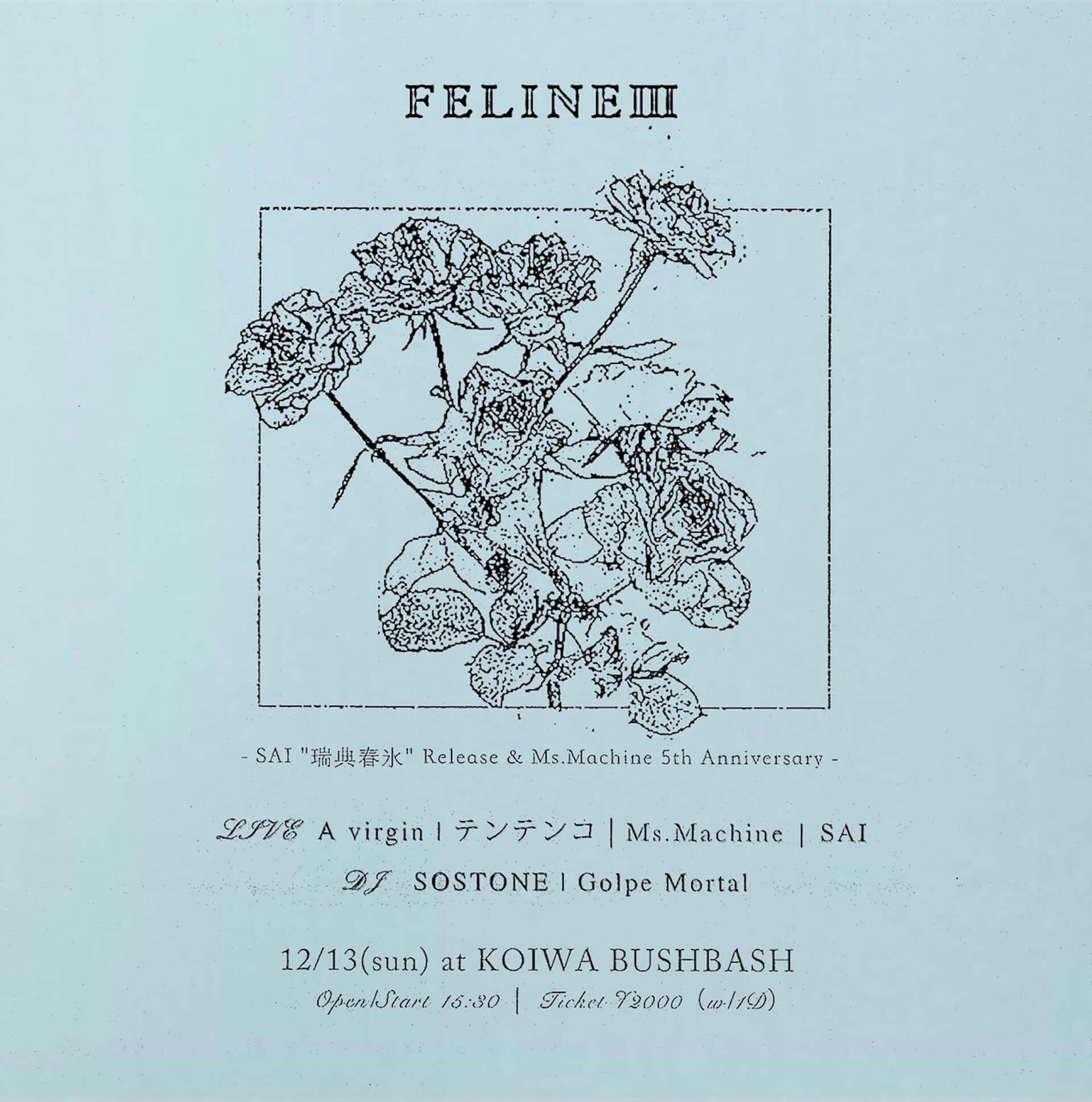 Ms.MachineのSAIが音源集『瑞典春氷』をCDでリリース決定!小岩BushBashでのリリースパーティーにはテンテンコらが出演 music201130_sai_2-1920x1938