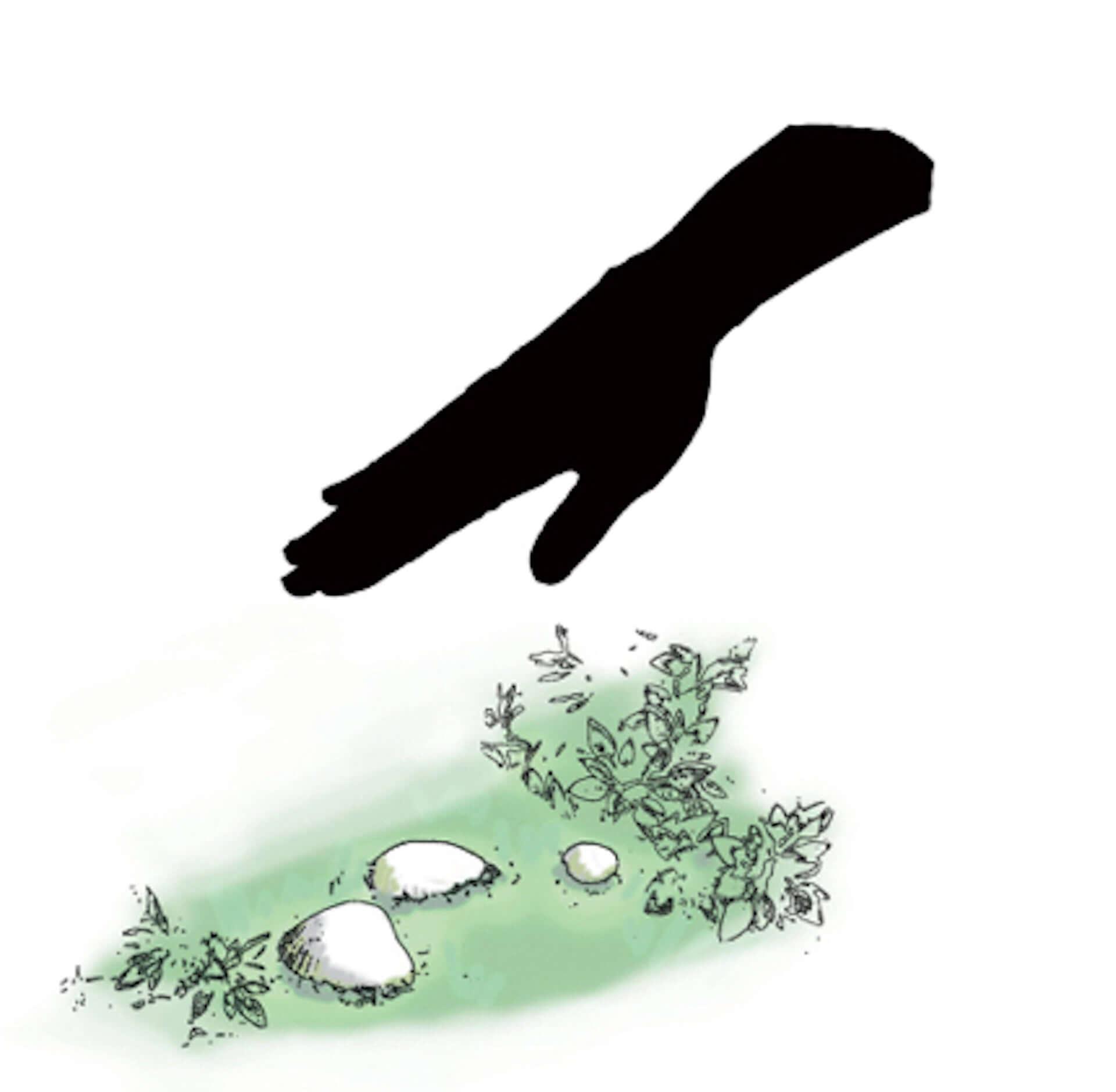 及川潤耶のサウンドアート『Ruhe:夢見る貝』が千葉県・市川市新市庁舎に登場!オリジナルの音響拡散システムを活用 art210122_sonifidea_1-1920x1880