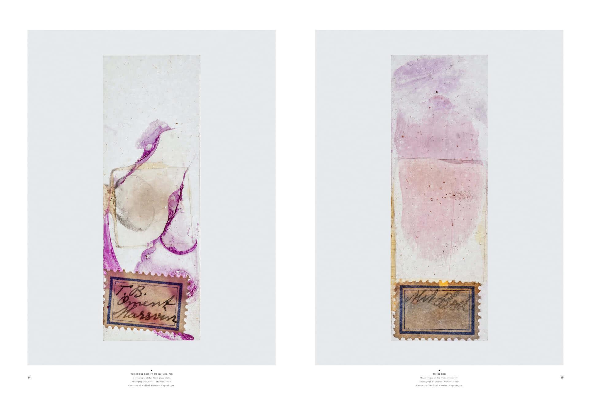 """""""存在自体が芸術作品""""とも称されるアートマガジン『プレソラマガジン』の第10号刊行記念展がANB Tokyoにて開催決定!トークショーも実施 art210201_plethora_1-1920x1360"""