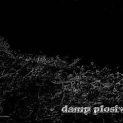 damp plosive roam
