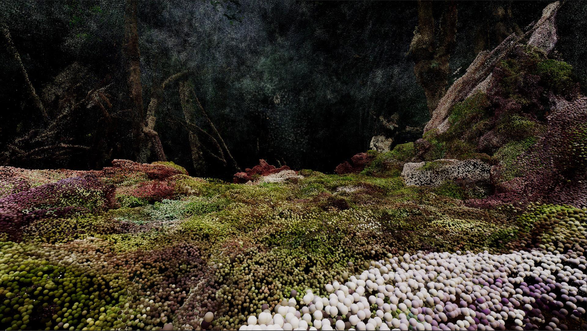 YAKUSHIMA TREASUREの死生観とポストコロナの表現 屋久島の原生林でのライヴ作品『ANOTHER LIVE』に迫る music210219_yakushimatreasure_32