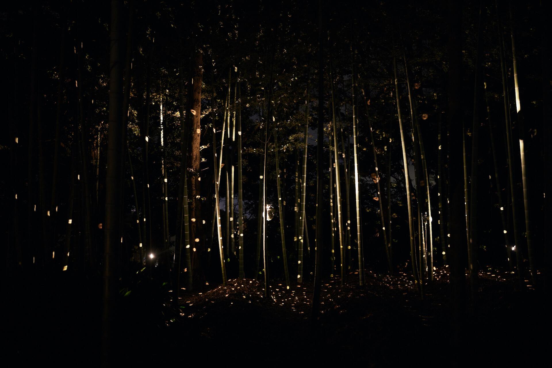 バーチャルを駆使した仮想大中寺で禅の世界を体感<MUSO Culture Festival 2021>レポート column210318_muso-09