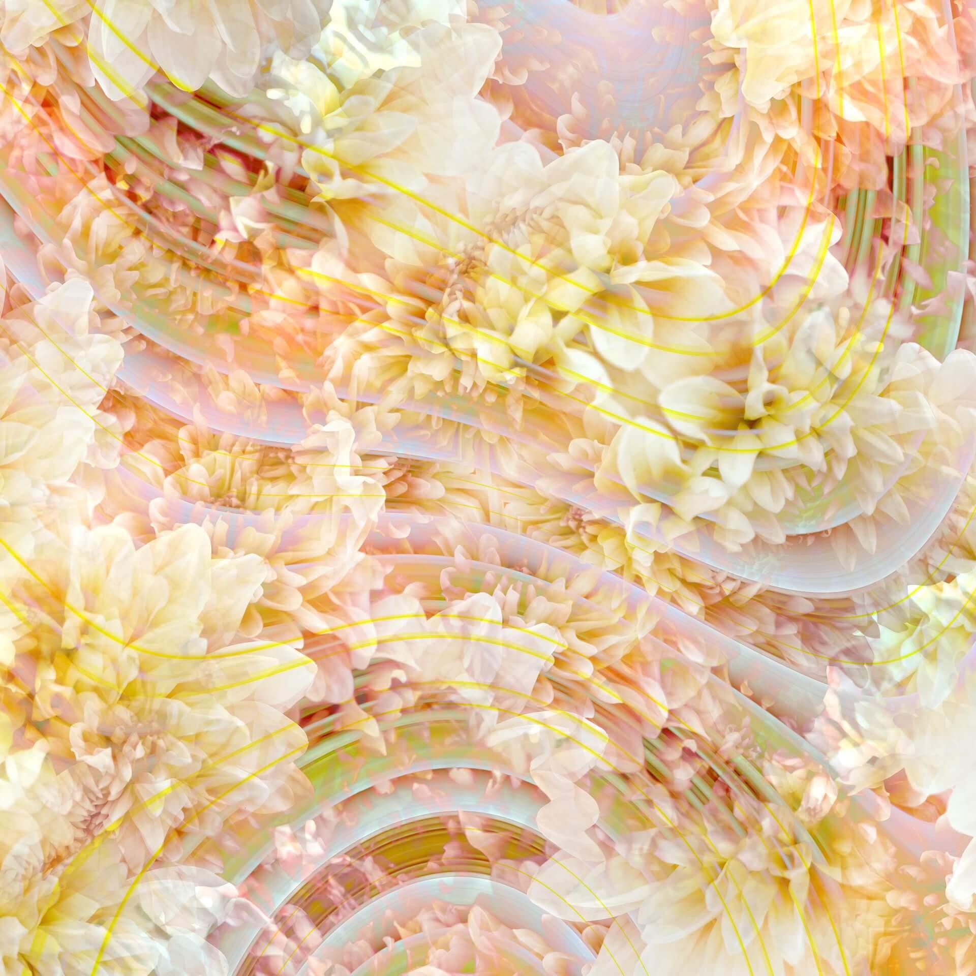 黒瀧節也による音楽と写真を組み合わせたアートヴァイナルやNFT作品のエキシビジョン<ALTER EGO>が原宿 THE PLUGにて開催! art210604_alterego_9