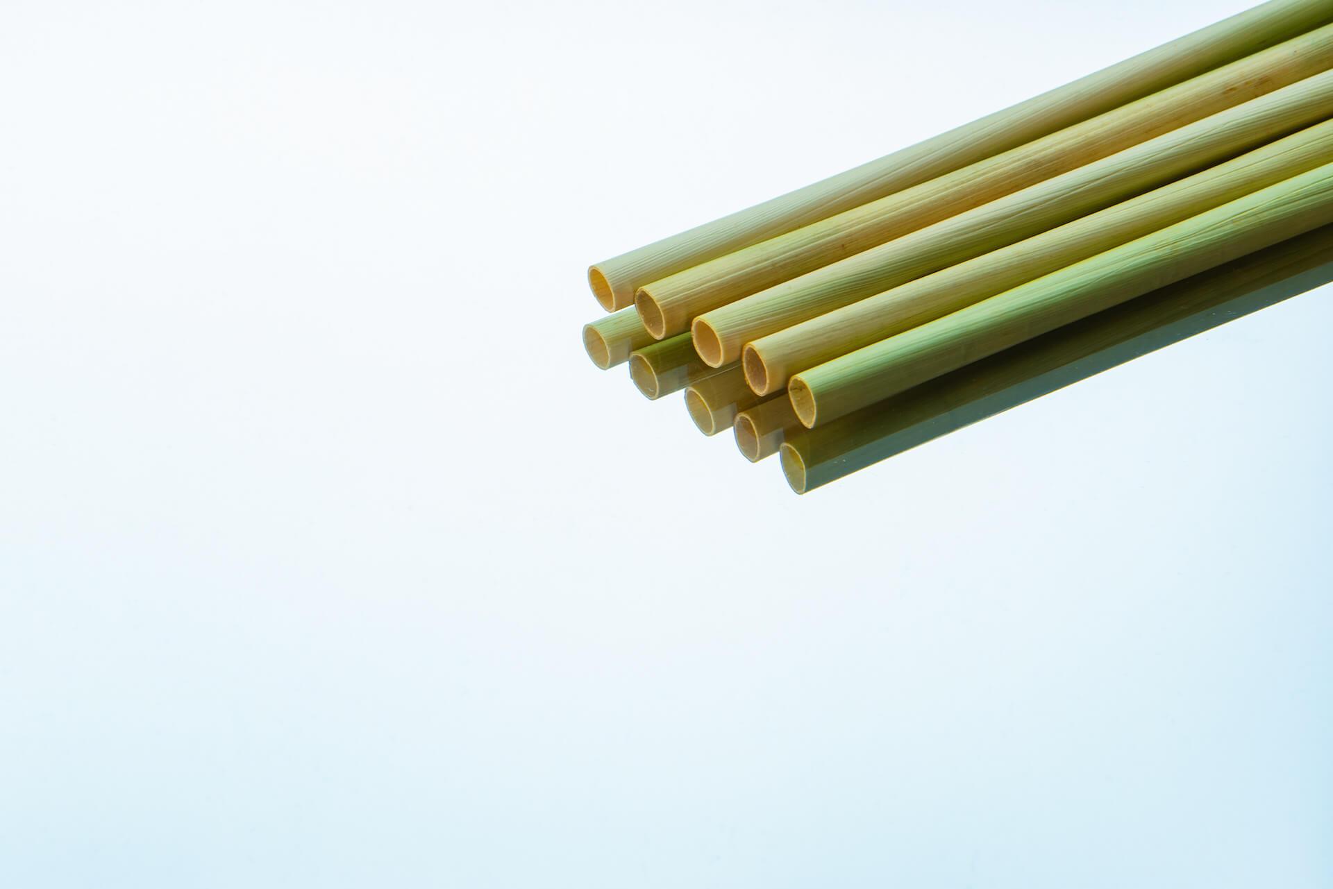 ふやけない!世界中で広まりつつあるサステイナブルな管のストロー「セジー」が登場 DSC_1399