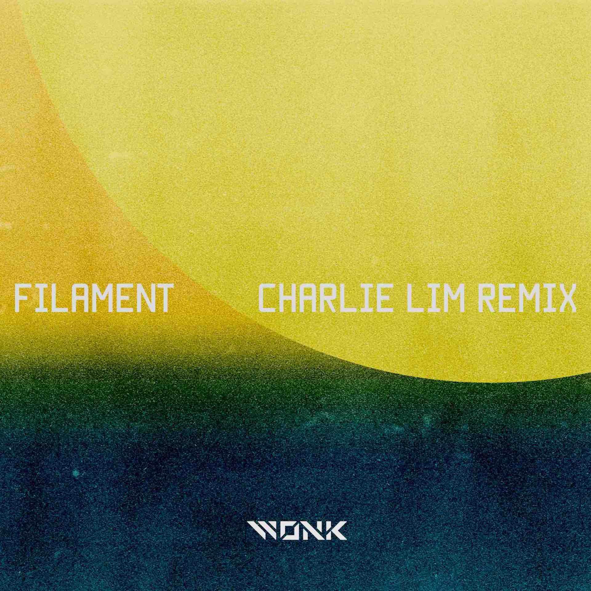 """WONK『EYES』リミックスシリーズ第4弾""""Filament - Charlie Lim Remix""""が本日リリース!どんぐりずとの2マンも music210721_wonk_charlielim_3"""
