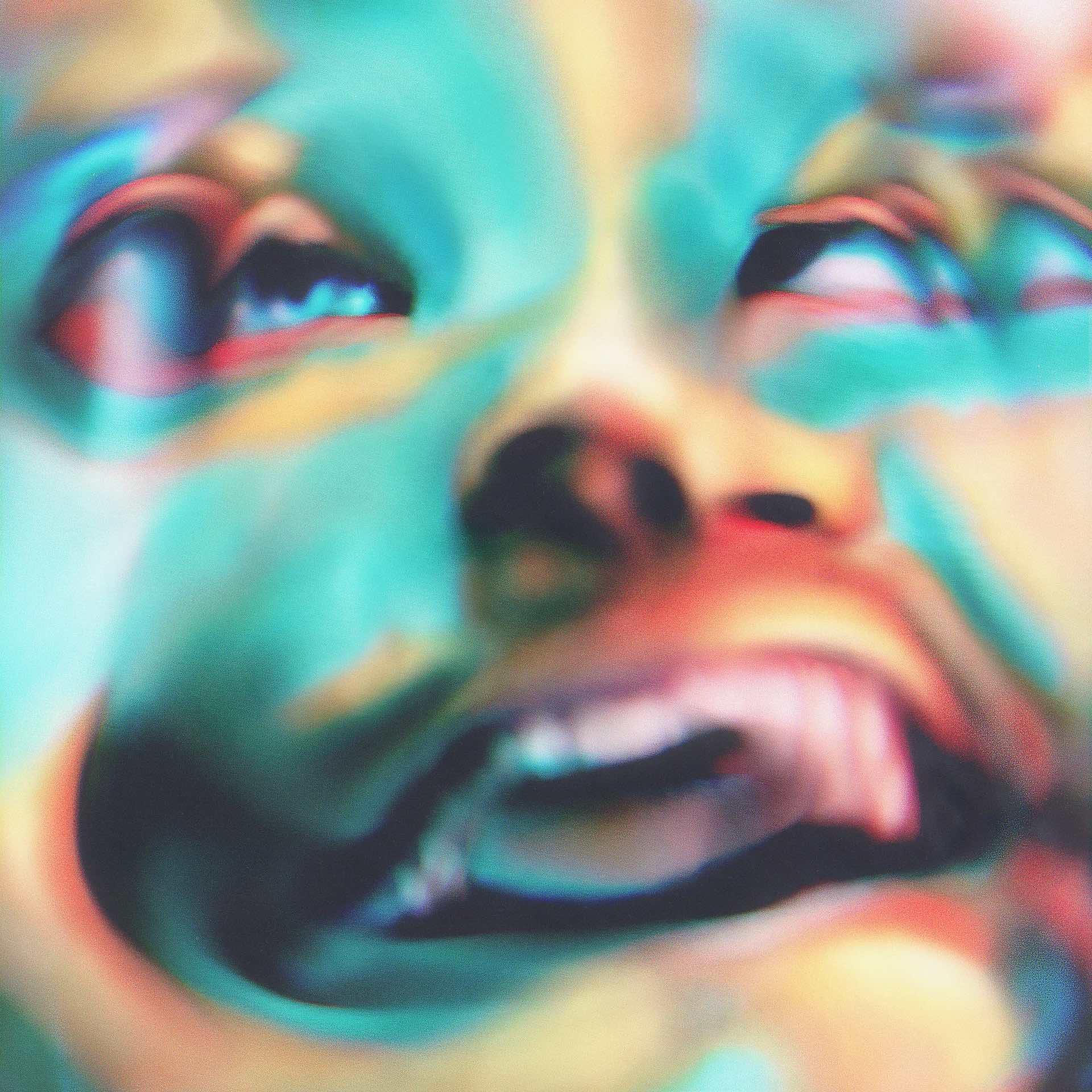 """Tempalayのニューシングル『あびばのんのん』収録の""""とん""""のティザー映像が公開!『サ道2021』の主題歌も話題 music210902_tempalay_3"""
