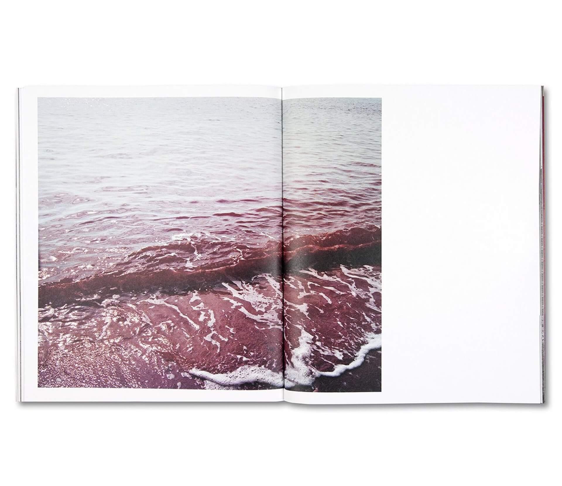 アートブックノススメ|Qetic編集部が選ぶ5冊/Roni Ahn 他 column210916_artbook-014