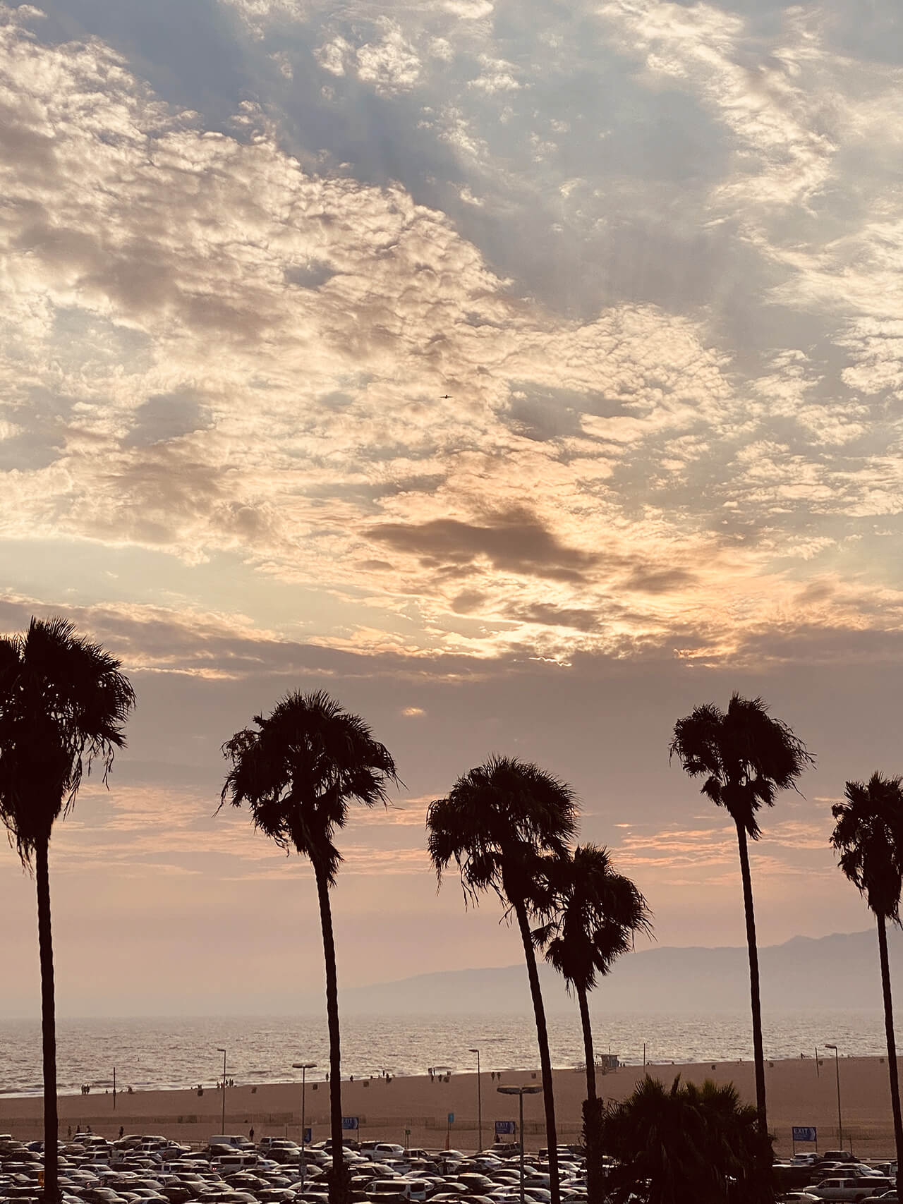 ピース綾部祐二のサンフランシスコ〜LAバイク旅を追う interview2110-yuji-ayabe-LA-10